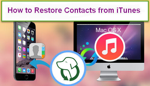Restore Contacts From Itunes