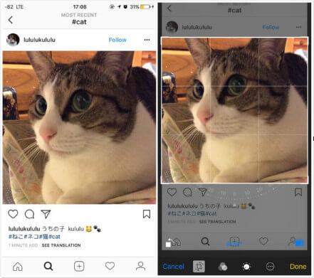 Breakthrough! Effective Ways to Save Instagram Photos on iPhone 2019