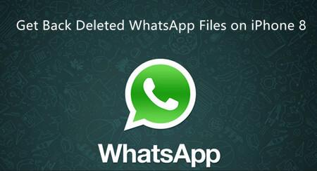 从 iPhone 8 恢复 WhatsApp 图片
