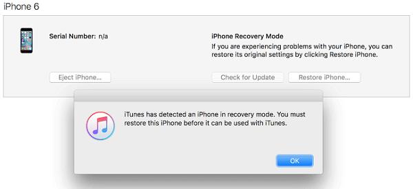 Metti iPhone in modalità di ripristino