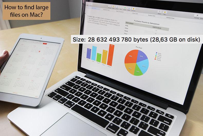 如何在Mac上查找大文件